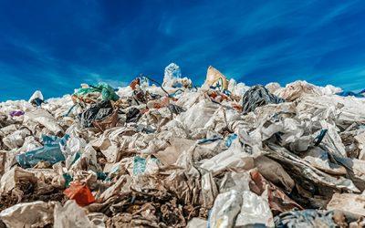 ONU pone cifras al desperdicio: el 17% de los alimentos termina en la basura